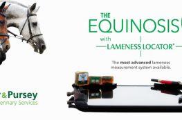 Equinosis